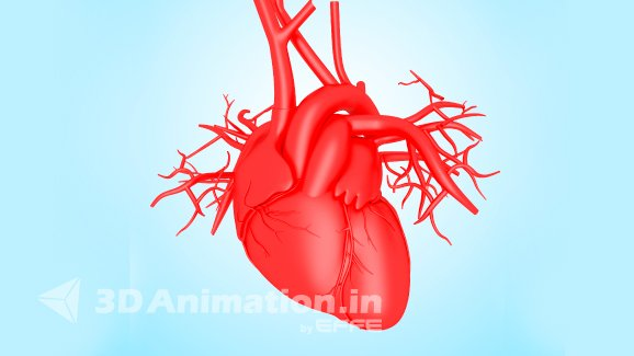 3D Heart Medical Animation